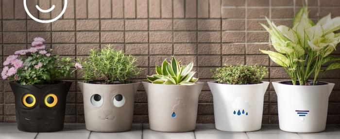 Саксии за цветя за дома и градината - от Хидростаб