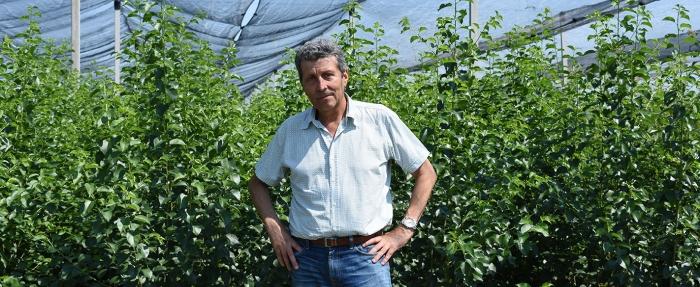Валентин Личев отглежда сортове череши и сливи в своя разсадник за овошки, който се полива с капково напояване